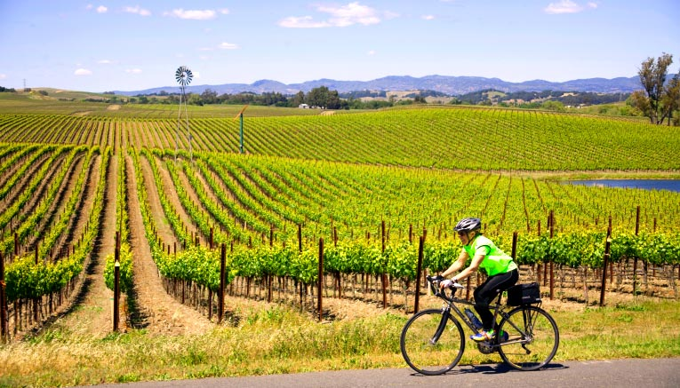Bwci-winecountry-biking-14
